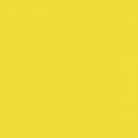 SW RAL1016-DC SulfurYellow