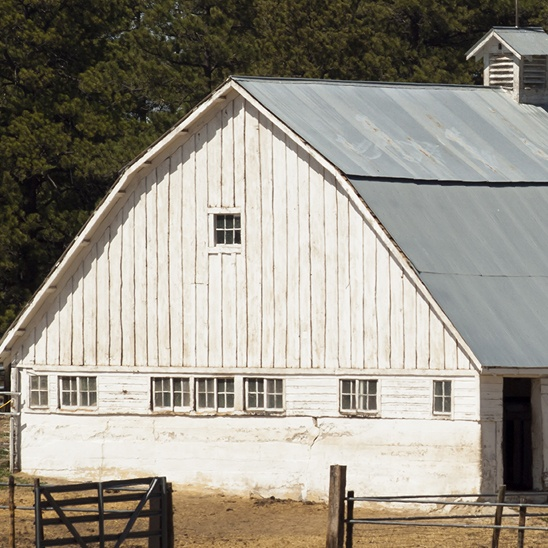 white_barn_small_1640711933